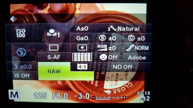 RAW setting on camera LCD